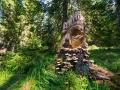 България през обектива на Виктор Димчев
