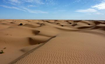 Sahara_3