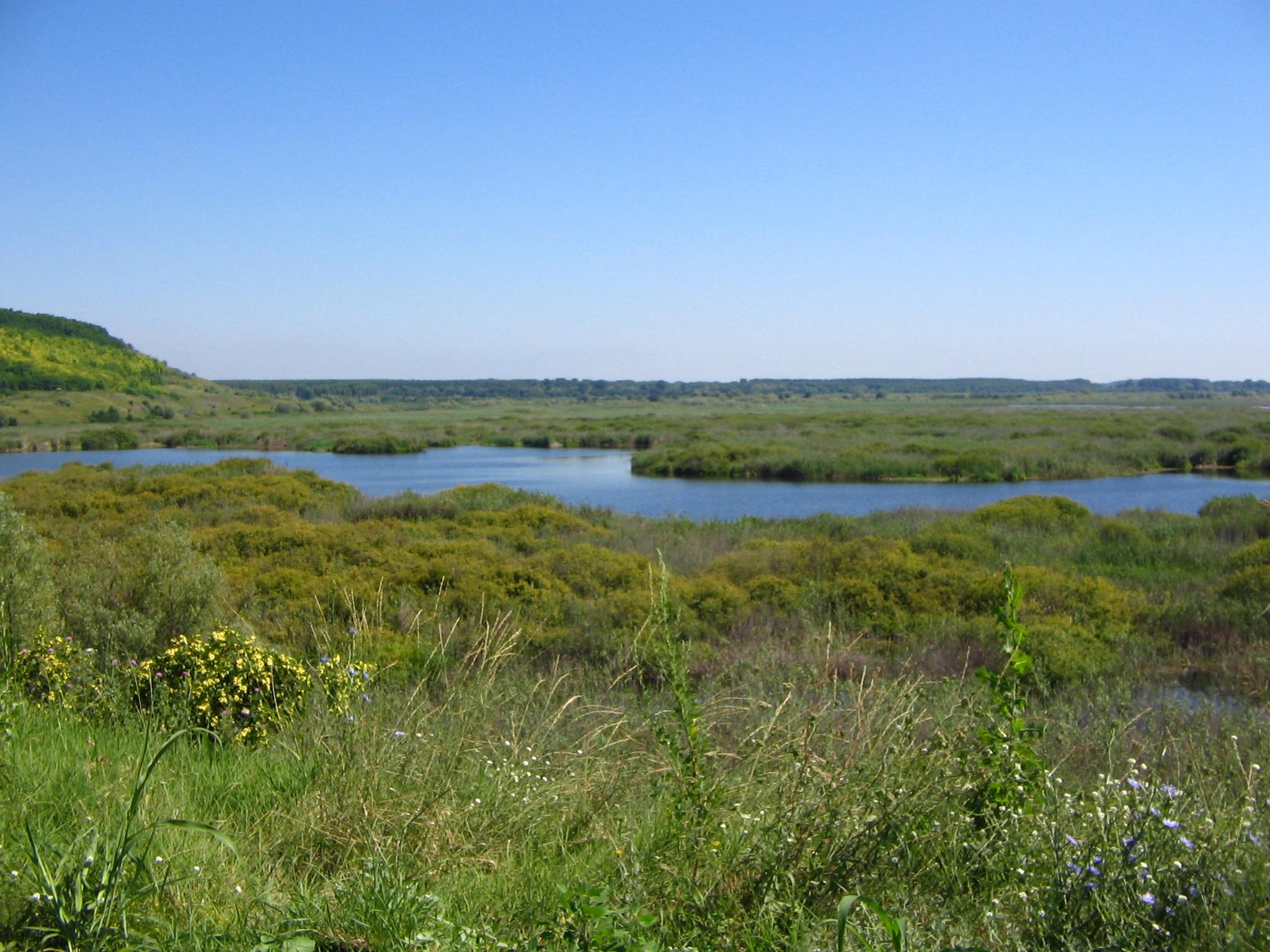 Srebarna-Lake