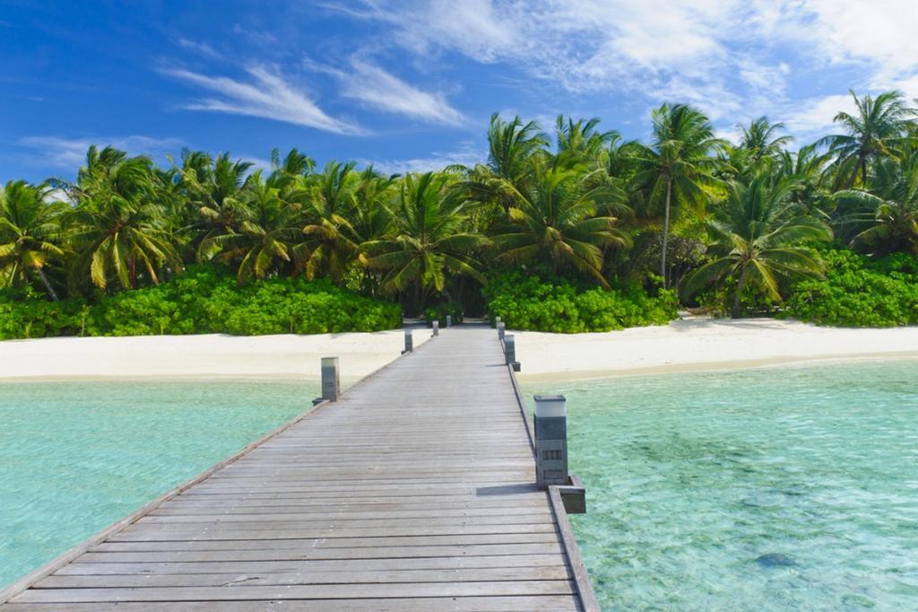 4-maldivi