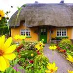 Магията на ирландските къщи със сламени покриви