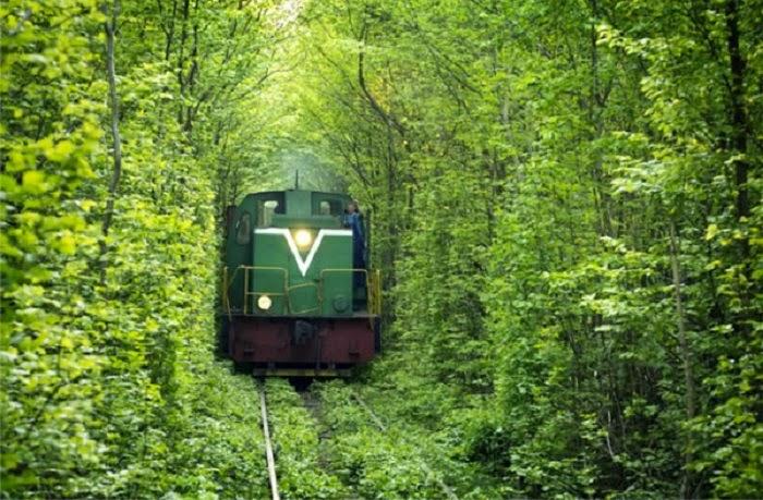 Fairy-Tale-Tunnel-of-Love-Found-in-Klevan-Ukraine-3