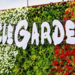 Най-голямата цветна градина в света е едно от чудесата на Дубай