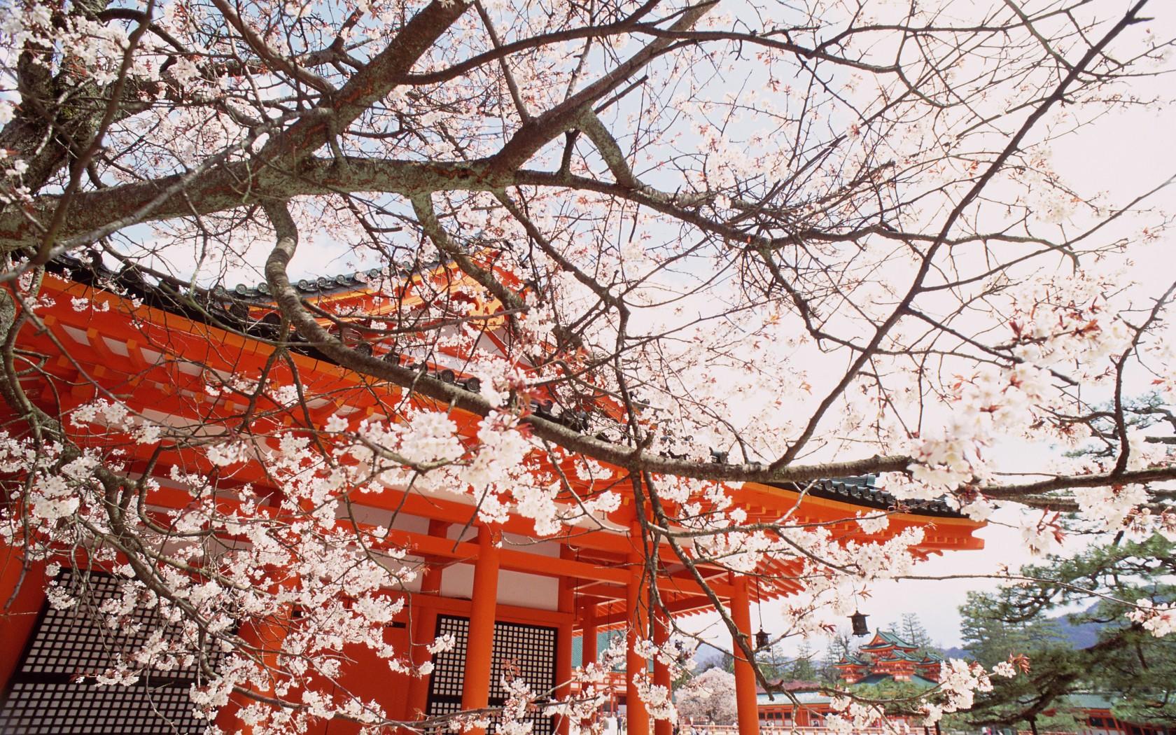 10_Kyoto_CA00806-1680x1050