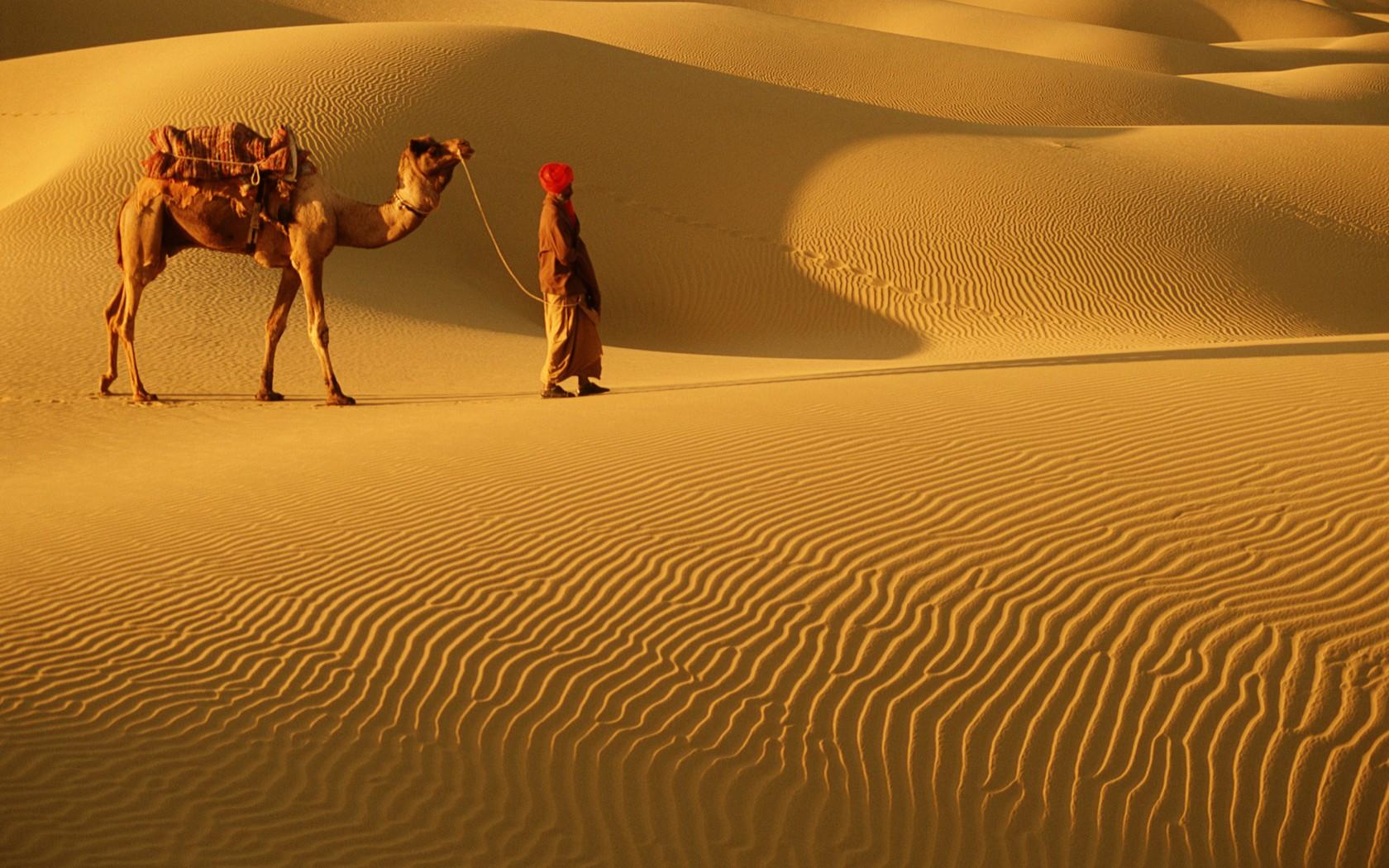 9_Rajasthan_AB13206-1680x1050