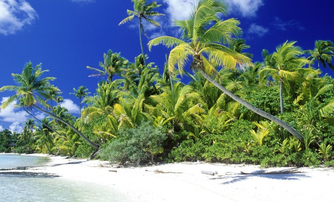 palm_beach_solomon_islands-normal
