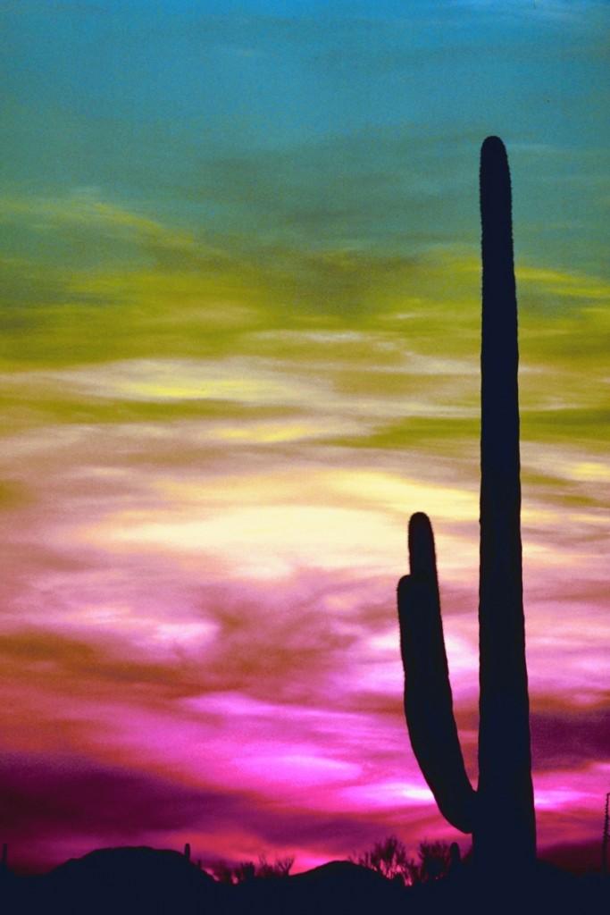 15Sunset in Arizona