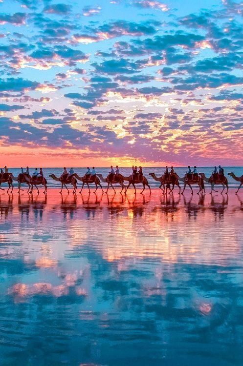 5Sunset-Camels-on-Cable-Beach-near-Broome-Western-Australia
