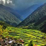 Осмото чудо на света - оризовите тераси в Банауе