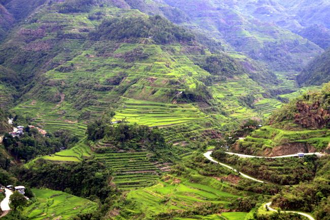 banaue-rice-terraces-philippines-5