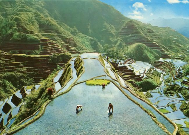 banaue-rice-terraces-philippines-6