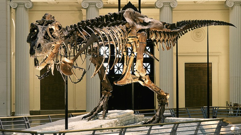 dino-museums-2015-chicago-exlarge-169