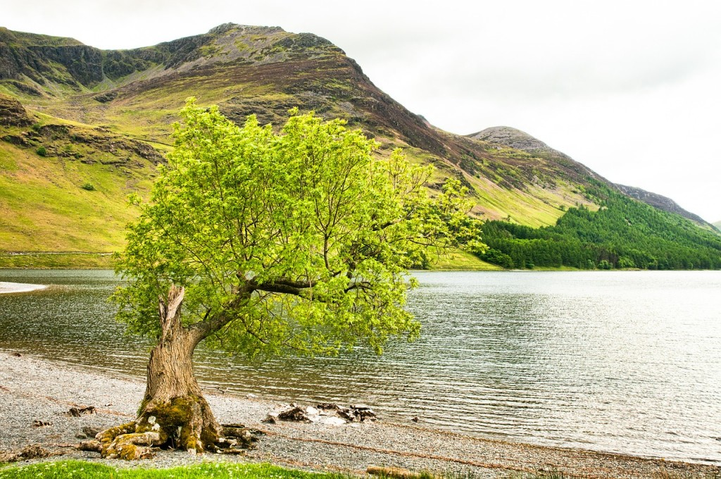 lake-district-493129_1280