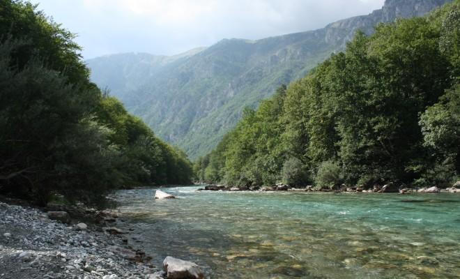 The Tara river