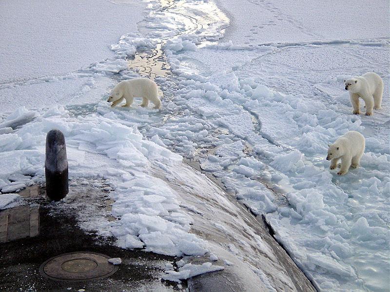 10Polar_bears_near_north_pole