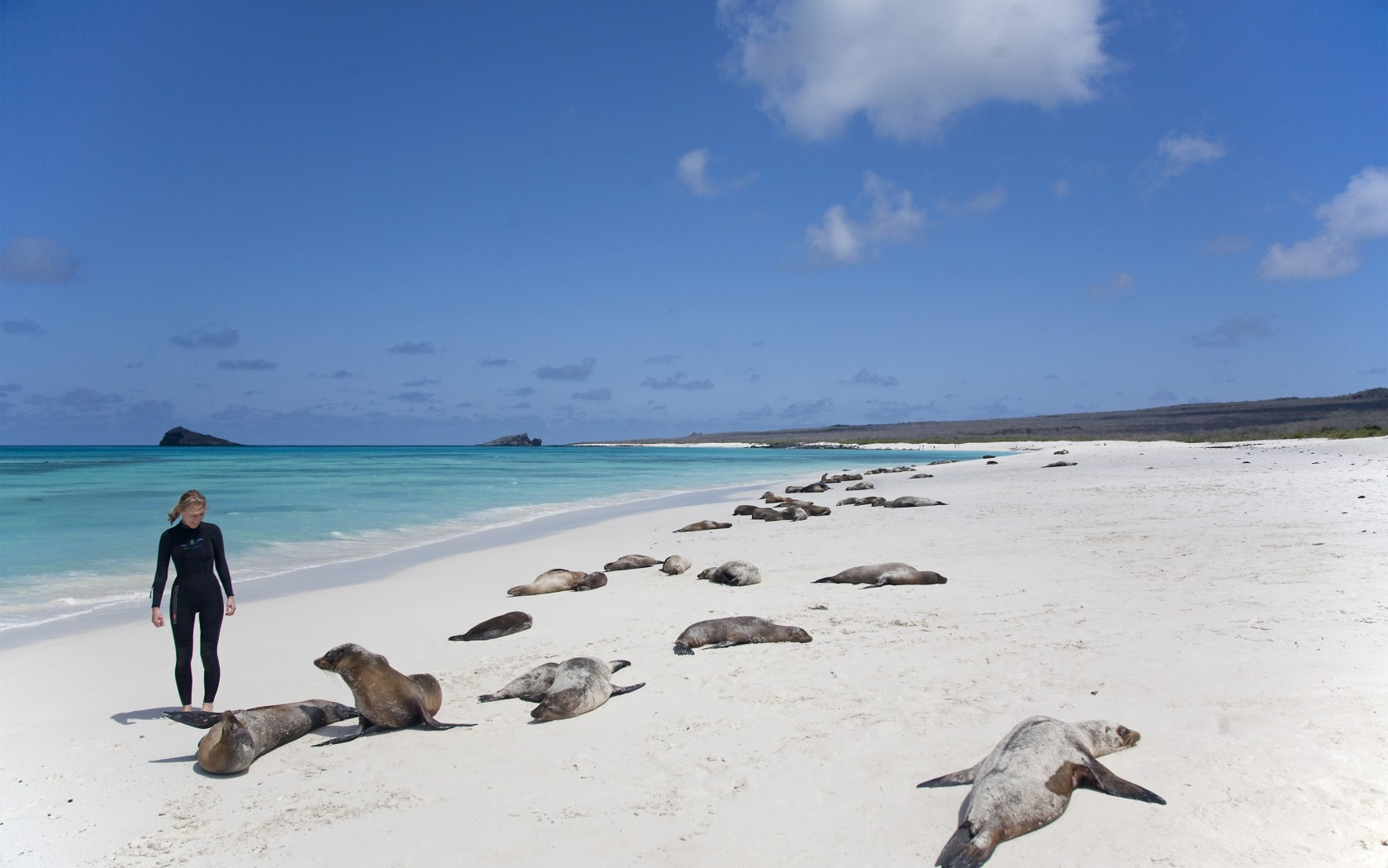 17Overs-Galapagos-Islands-AWL_GAL0165-1680x1050