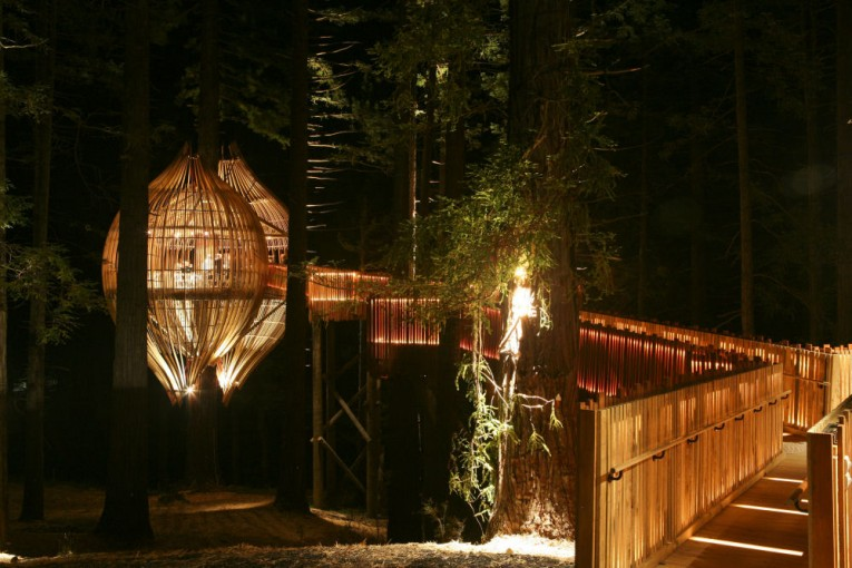 6treehouse-restaurant