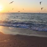 10 от най-красивите български плажове