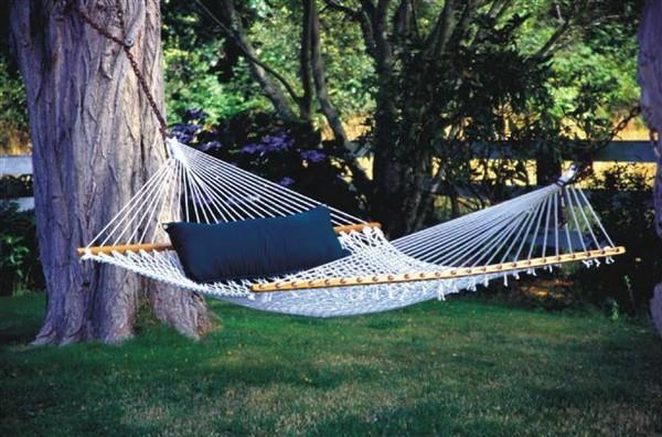 hammock-20