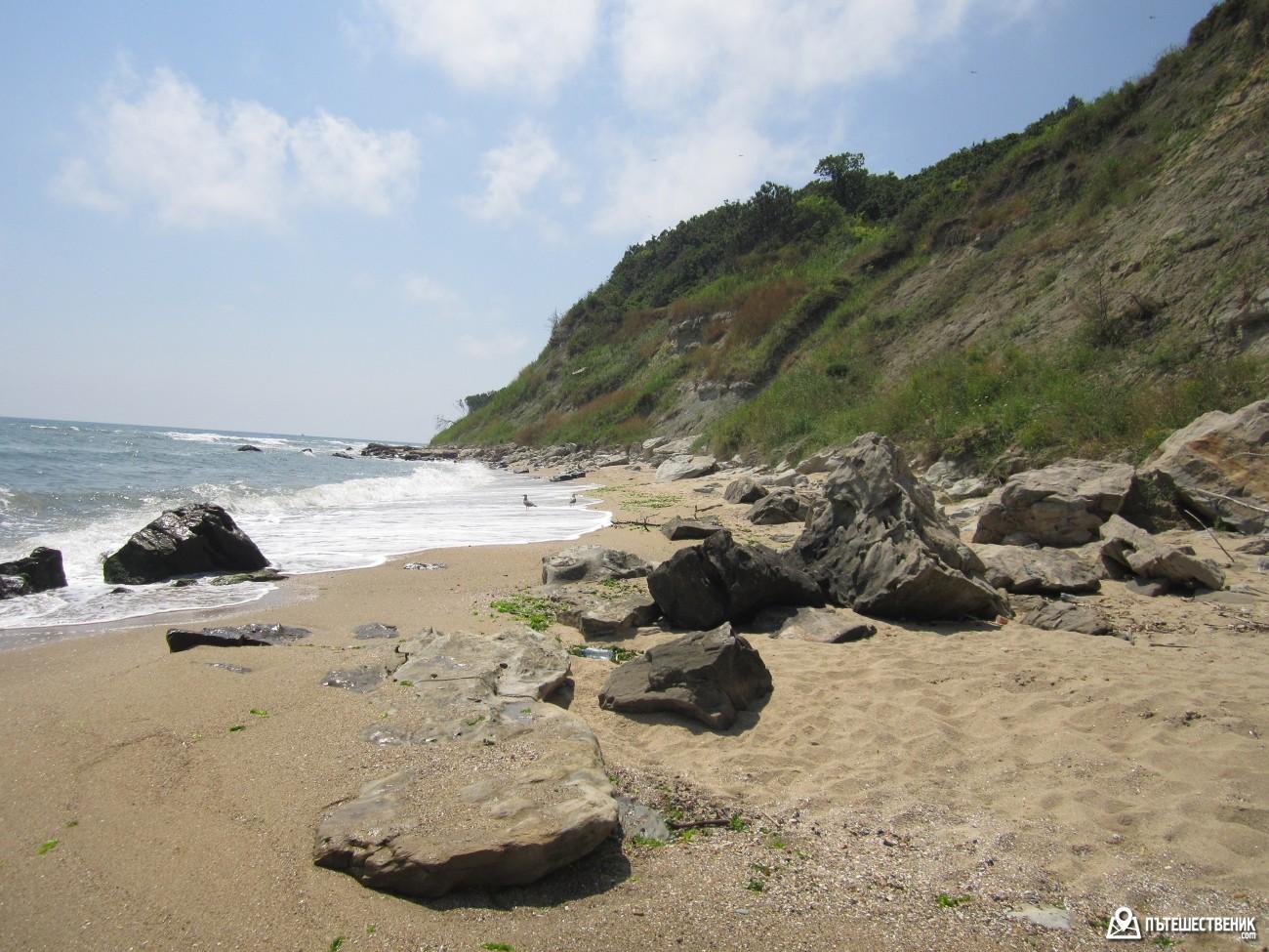 Краят на плажната ивица, осеян с камъни, хиляди миди и рапани.