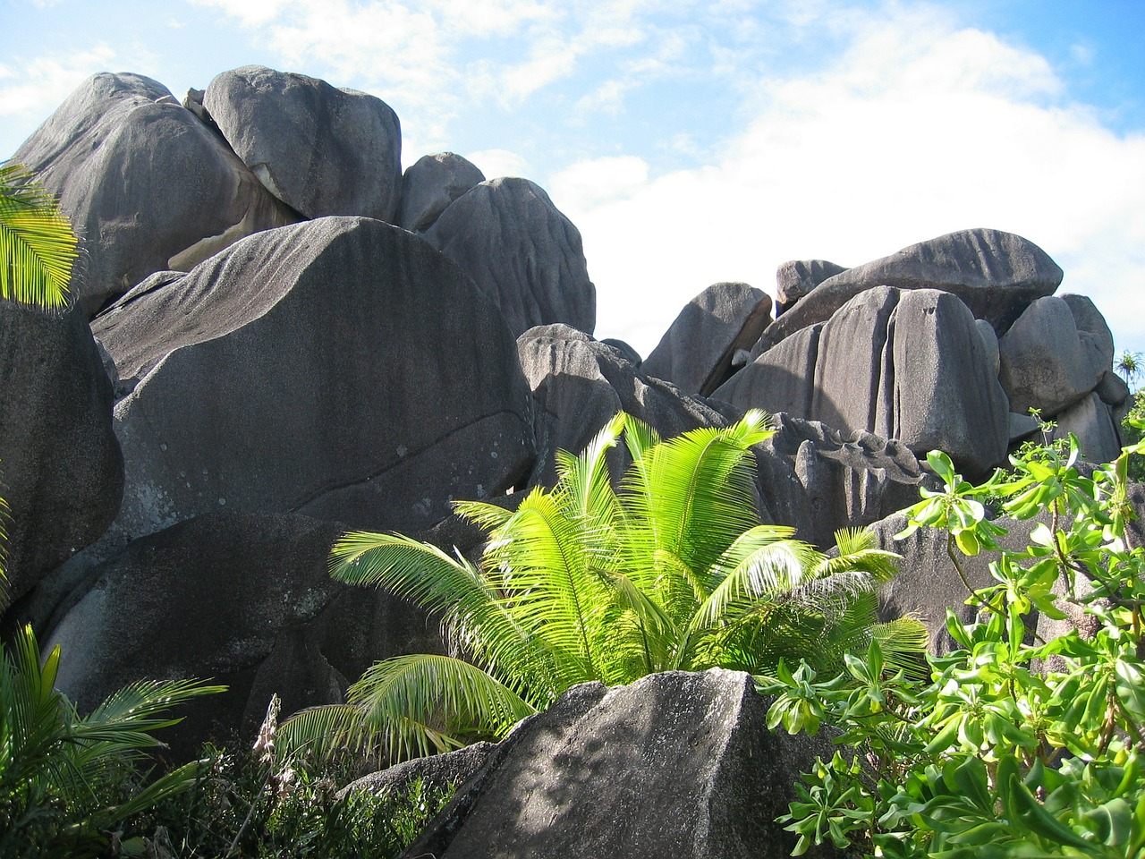 seychelles-168879_1280