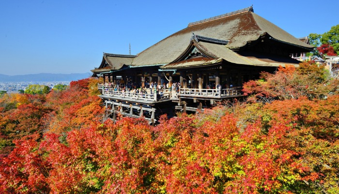 1-Autumn blog - Kyoto Japan