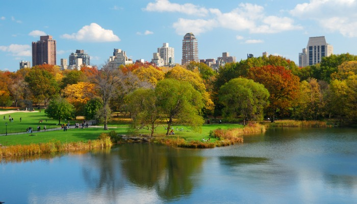 5-autumn blog - new york (2)
