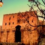 Цитаделата Алепо преди войната… ще загубим ли това съкровище?