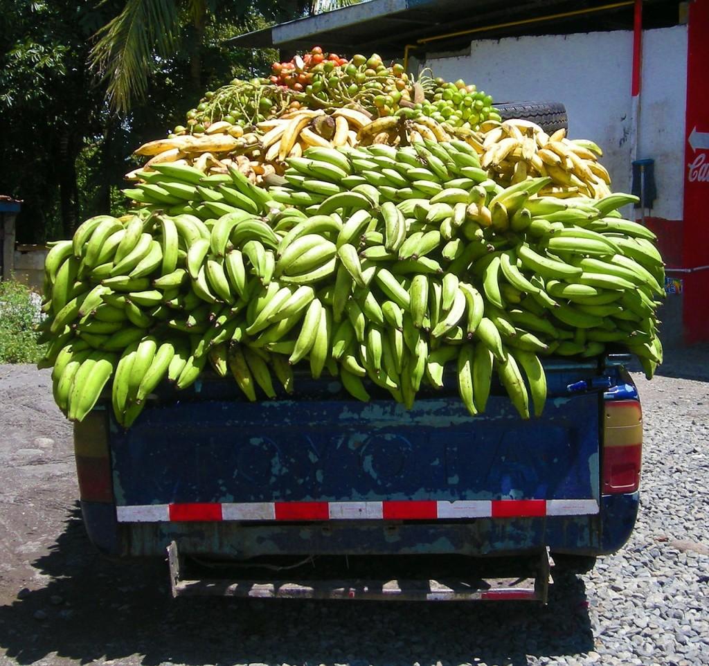 012-banana-18802_1280