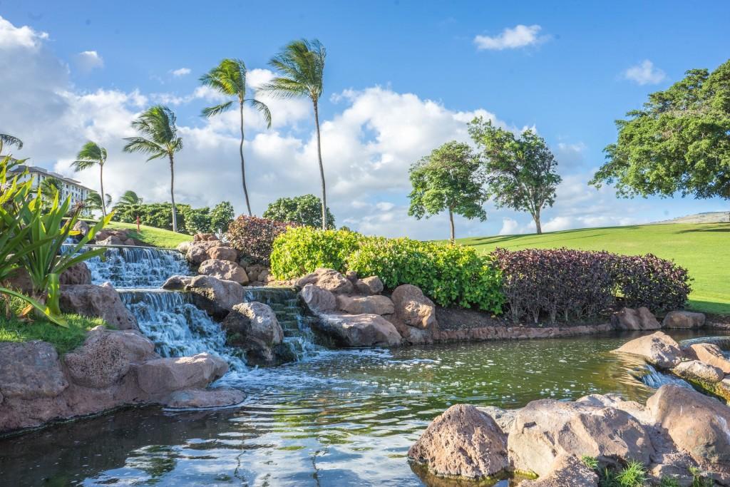 hawaii-1034890_1920