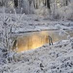 16 снежни пейзажа, които ще ви накарат да обичате зимата