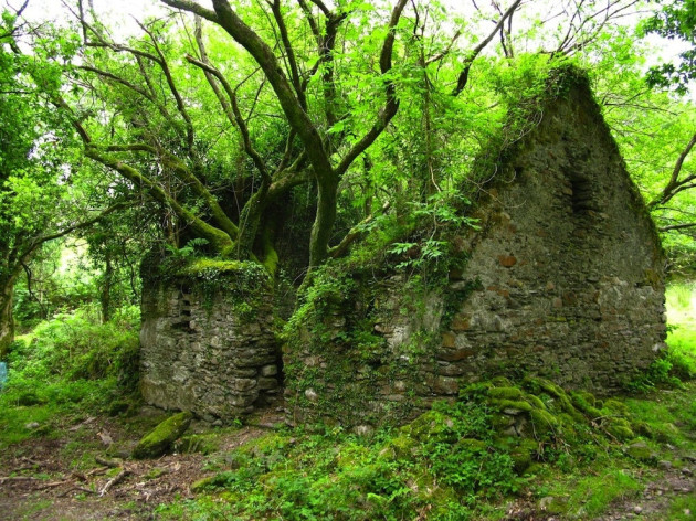 06-The-Kerry-Way-walking-path-between-Sneem-and-Kenmare-in-Ireland-630x472