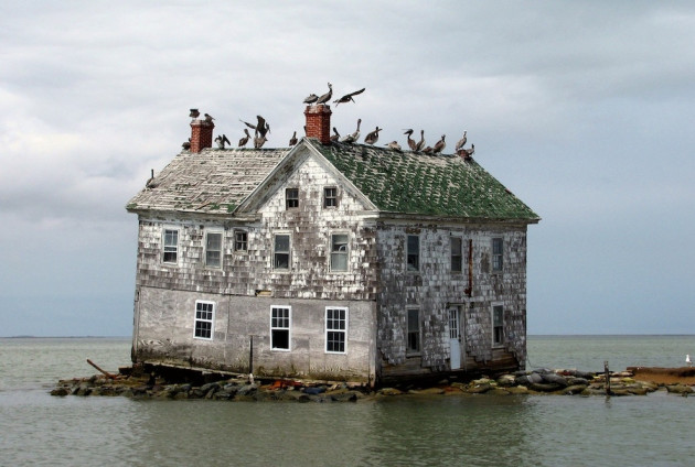 08-Holland-Island-in-the-Chesapeake-Bay-630x424