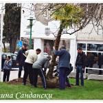 Палми и мирис на лимон по улиците на Сандански