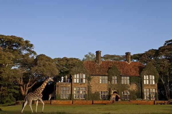Giraffe-Manor 1