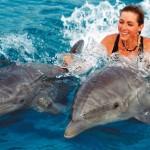 Да плуваш с делфини – живот отвъд границите