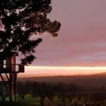 Какво ще кажете за къщичка на дървото с изглед към лавандуловите полета на Италия?