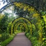 Вижте 5 от най-красивите ботанически градини в света