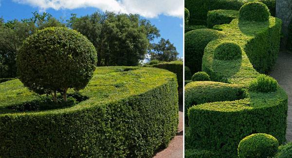 Gardens-of-Marqueyssac-Perigord-2-5