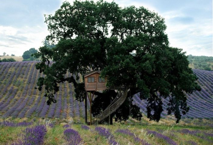 la-piantata-tree-house-Italy