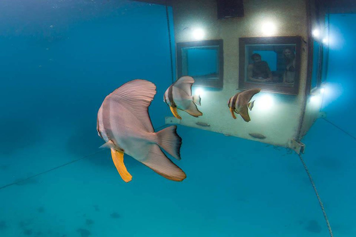 manta-resort-underwater