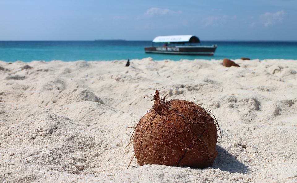 Занзибар, zanzibar, лодка, океан, вода, кокосов орех