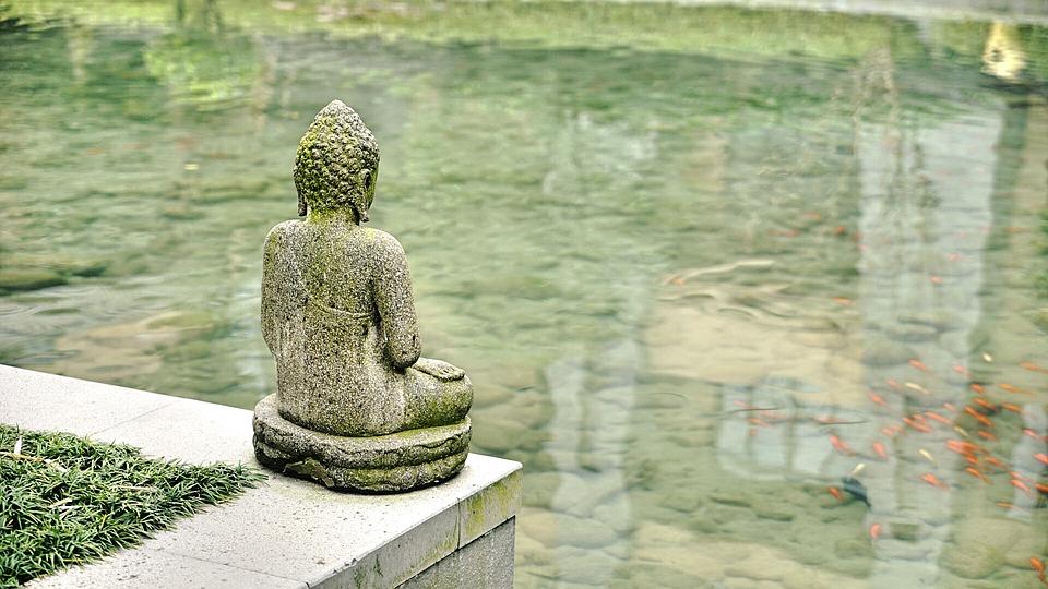 buda, буда, статуя, вода