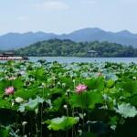 10 удивителни забележителности, заради които ще поискате виза за Китай