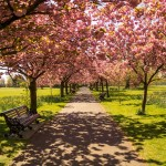 16 европейски дестинации за тази пролет