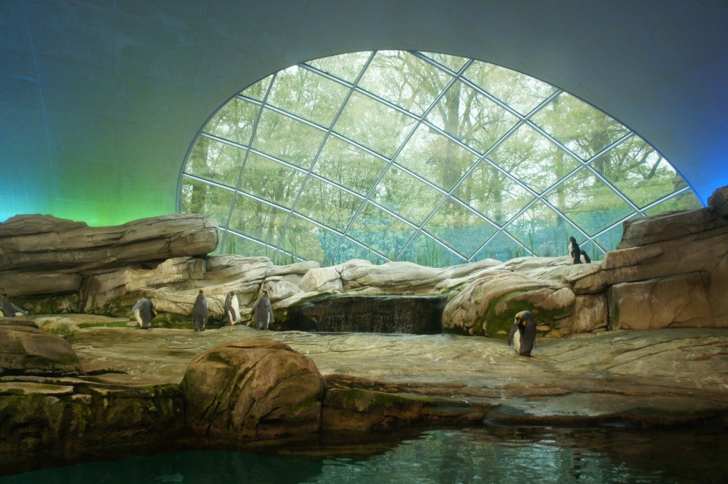 05-Berlin-zoo-8719093617_7686b6e2f1_k